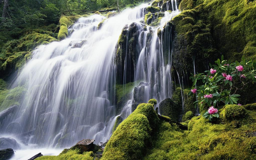 3 Incredible Costa Rica Road Trip Ideas